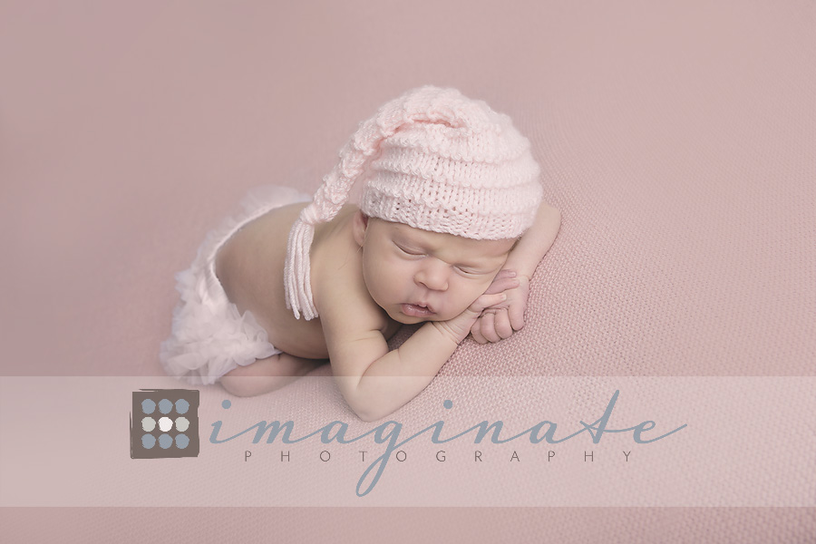 newborn baby girl evelyn w