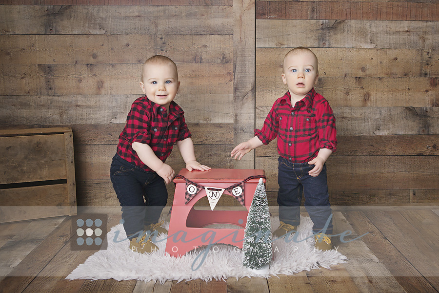 One Year Old Twin Boys Bloomington Normal Photographer Monday March 5 2018 Posted In 1st Birthday