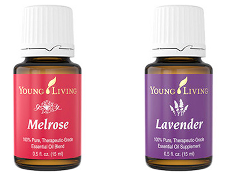 melorse & lavender