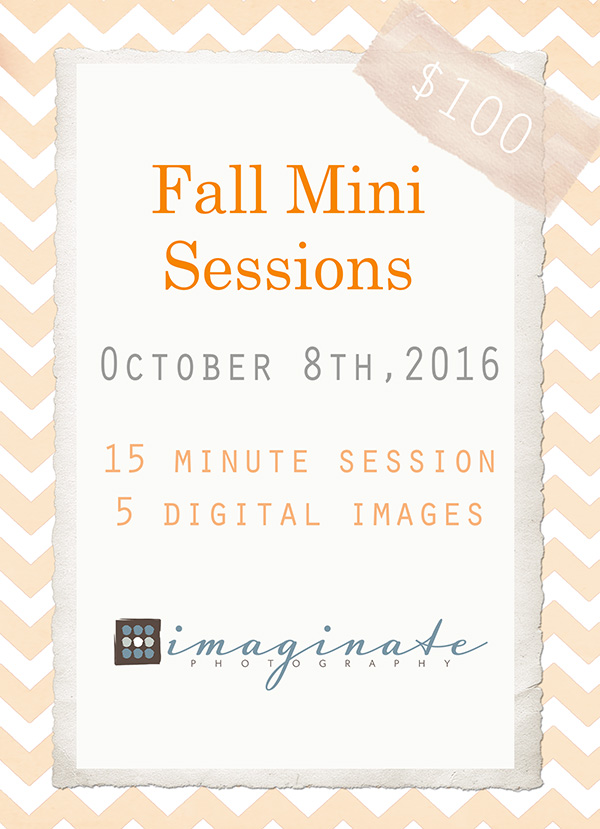 FALL MINI SESSIONS open for booking